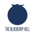 The Blueberry Hill Baby Hats